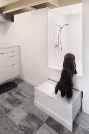 architecture bathroom toilet: this toronto house features a shower for pets in the bathroom by canadian studio post architecture