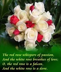 Beautiful Images Of Flowers With Love Quotes Best of White Rose Picture With Love Quotes