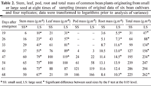 Green Bean Growth Chart Effects Of The Size Of Sown Seed On Growth And Yield Of