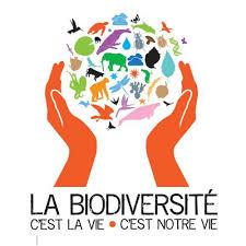 [Article] La biodiversité, est-ce un rêve ?  Images?q=tbn:ANd9GcSafSJeZkNWS4xaHeElKThrOkaQodJU8QadeX2nmPgGrZMGxGpe