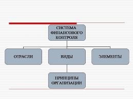 Финансовый контроль в бюджетной системе курсовая закачать Название финансовый контроль в бюджетной системе курсовая