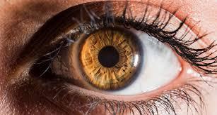 brown eyes vs hazel eyes what makes