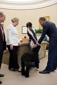 president barack obama and burmese opposition leader aung san suu kyi pet bo fileobama oval officejpg