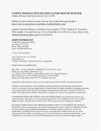 Deli Clerk Resume Unique 21 Federal Resume Format Professional