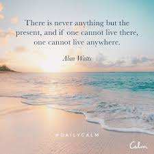 Wisdom Quotes DailyCalm Calm OMG Quotes Your Daily Dose Of Gorgeous Calm Quotes