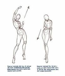enjoy a collection of references for character design female anatomy the collection contains ilrations sketches model sheets and tutorials