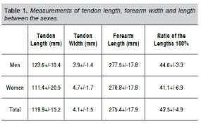 forearm size use of the tendon of the palmaris longus muscle in surgical