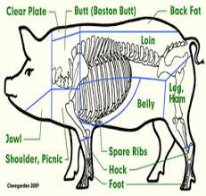 CountryStyle Barbecue Pork Rib Recipe  Barbecue Pork Ribs Pork Country Style Pork Spare Ribs