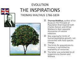evolution the inspirations thomas malthus  thomas malthus  evolution the inspirations thomas malthus 1766 1834  thomas malthus author of an essay