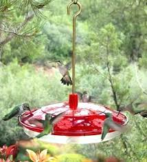 glass bird feeder stain glass bird feeders big hummingbird feeder extra large bee proof for