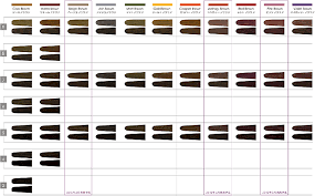 Loreal Color Chart Loreal Richesse Colour Chart Post Sophie Hairstyles 30900