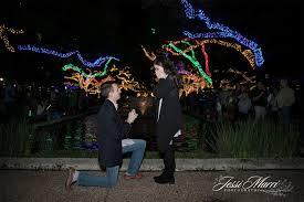 Christmas Light Proposal A Magical Zoo Lights Proposal Jessi Marri Photography