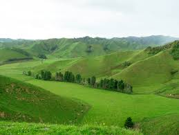 essays on hills like white elephants explain the poem hills like  hills like white elephants related keywords suggestions hills file taranaki hills jpg