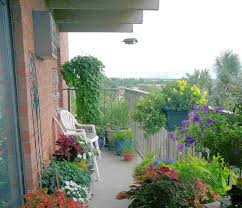 Small Picture balcony garden design melbourne Margarite gardens
