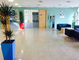 office indoor plants. Indoor Office Plants Maintenance Cork