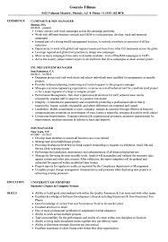 Mis Officer Sample Resume MIS Manager Resume Samples Velvet Jobs 6