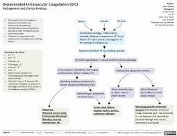 Pathophysiology Of Diarrhoea In Flow Chart The Calgary Guide To Understanding Disease