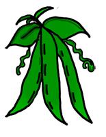 green beans clip art. Perfect Art Free Cliparts Download Clip Art On Beans Green Clipart Bean Intended Beans Clip Art
