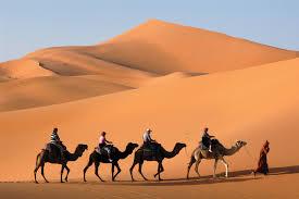 <b>Caravan</b>   desert transport   Britannica