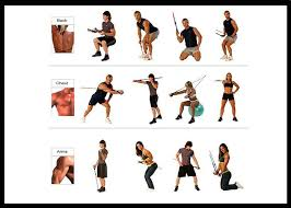 Resistance Band Exercise Chart 14pcs Latex Exercise Resistance Band Kit With Door Anchor Ankle Strap Exercise Chart And Resistance Band Carrying Case Buy Exercise Resistance