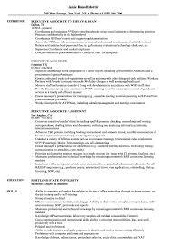 Executive Associate Sample Resume Executive Associate Resume Samples Velvet Jobs 2