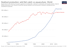 Seafood Yield Chart Seafood Production Our World In Data