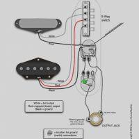 marshall 1960av wiring diagram dcwest shure sm57 wiring diagram wiring diagram amazing shure sm57 wiring diagram mold wiring diagram ideas marshall 1960av wiring diagram