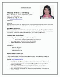 Sample Resume For College Student Looking For Summer Job Free For