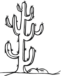 Small Picture Cactus Coloring Page Free Coloring Pages For KidsFree Coloring