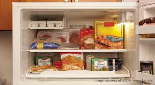 refrigerator and freezer. how to store food in the freezer refrigerator and