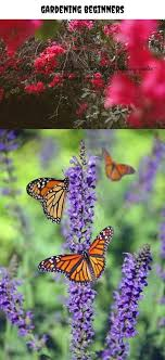 gardening beginners_105_20180711052521_23 #gardening gloves with ...