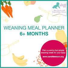 7 Day Meal Planner For Weaning Baby From 6 Months Sarah