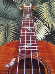 moore bettah gecko tenor ukulele my tenor uke is my favourite uke