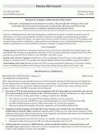Vice President Resume Samples Vice President Resume Examples Resume Examples