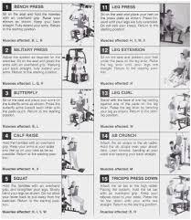 66 Unusual Total Gym Wall Chart Pdf