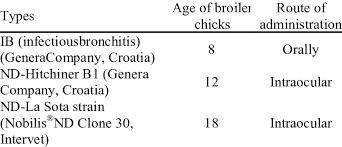 Chicks Vaccination Chart Vaccination Program Applied During The Experiment Download