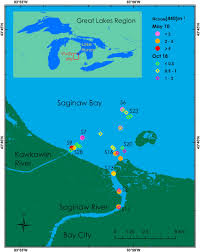 Study Site And Sampling Locations In The Saginaw River And