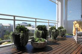 Small Picture Inner West Balcony Garden Sydney