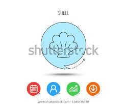 Seashell Chart Sea Shell Icon Seashell Sign Mollusk Royalty Free Stock Image