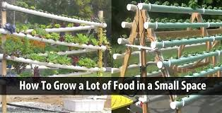 grow a lot of food in a small space 2 diy hydroponic systems you have to see