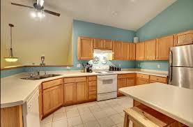 kitchen cabinet painting eagan