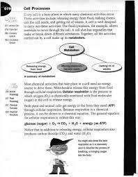 Kids. free printable 7th grade life science worksheets: Life ...