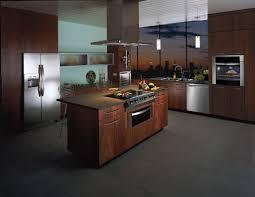 Kitchen Appliances Built In Contemporary Kitchen Appliances Home Design Ideas