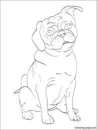 Pug Coloring Page Coloring Pages