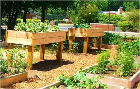 small raised garden ideas using