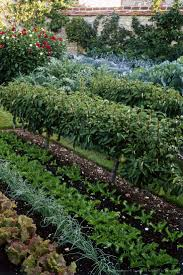 Walled Kitchen Garden 17 Best Images About Beautiful Vegetable Gardens On Pinterest