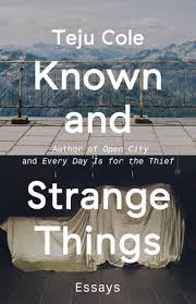 of the best essay collections of  known and strange things essays