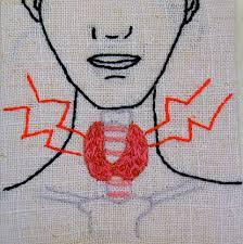 Αποτέλεσμα εικόνας για θυρεοειδικής ορμόνης