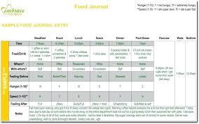 Sample Food Journal Template Diet Journal Template Food Diary Template Excel Food Journal