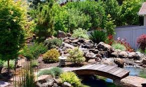 natural inspiration koi pond design